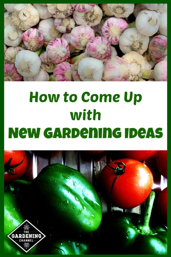 homegrown garlic and peppers and tomatoes with text overlay how to come up with new gardening ideas