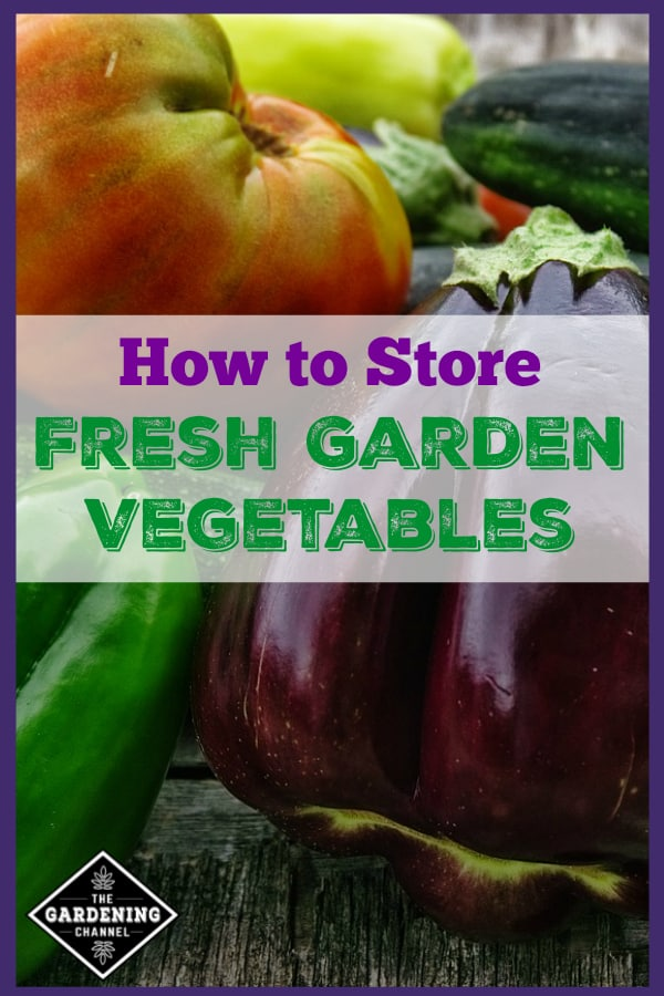 close up of garden harvest with text overlay how to store fresh garden vegetables