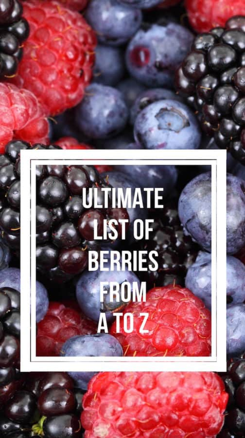 Ultimate List of Berries