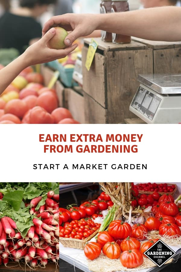 farmers market stands with text overlay earn extra money from gardening start a market garden