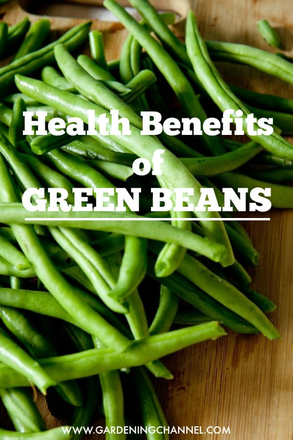 fresh snapped green beans on cutting board with text overlay health benefits of green beans