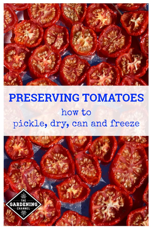 sundried tomatoes with text overlay preserving tomatoes how to pickle, dry, can and freeze
