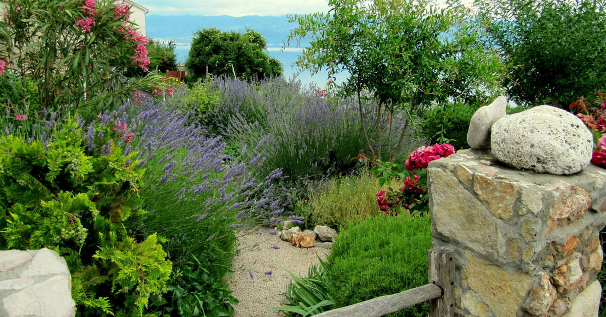 How To Create A Water Saving Garden Gardening Channel