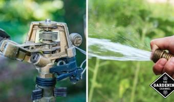 sprinkler head and water hose watering garden