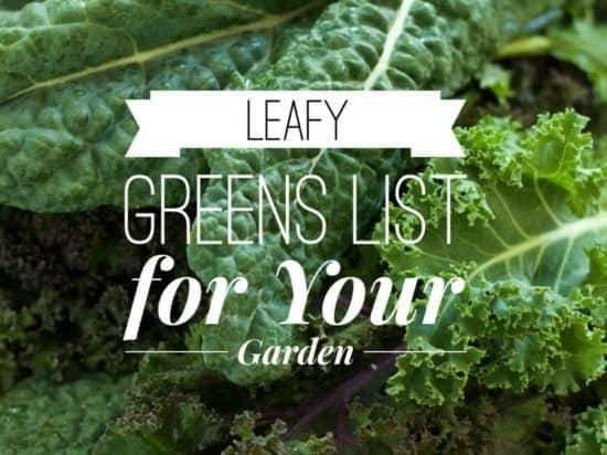 Leafy Green List for Gardening