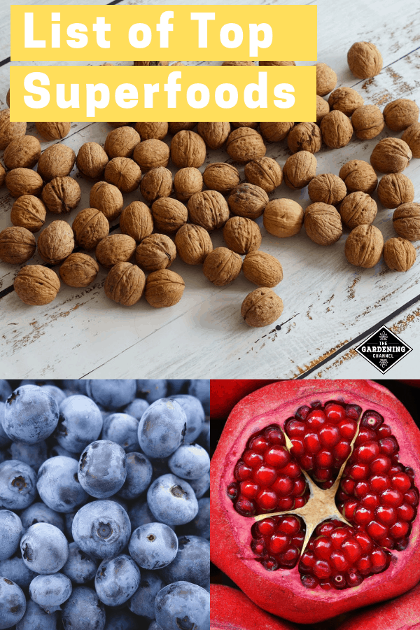 walnuts blueberries pomegranate with text overlay list of top superfoods