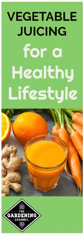orange carrot ginger vegetable juice with text overlay vegetable juicing for a healthy lifestyle
