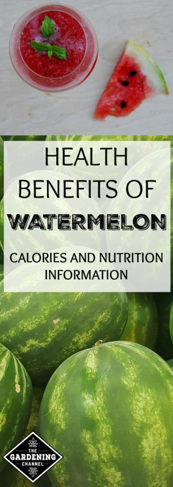 watermelon drink and harvested watermelons with text overlay health benefits of watermelon calories and nutrition information