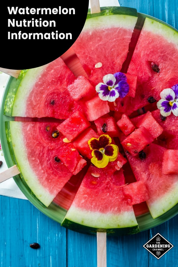 cut watermelon with text overlay watermelon nutrition information