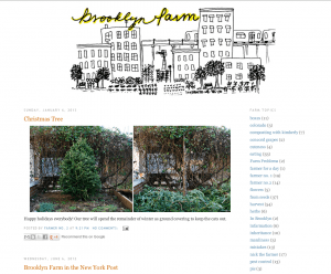 Brooklyn farm gardening blog