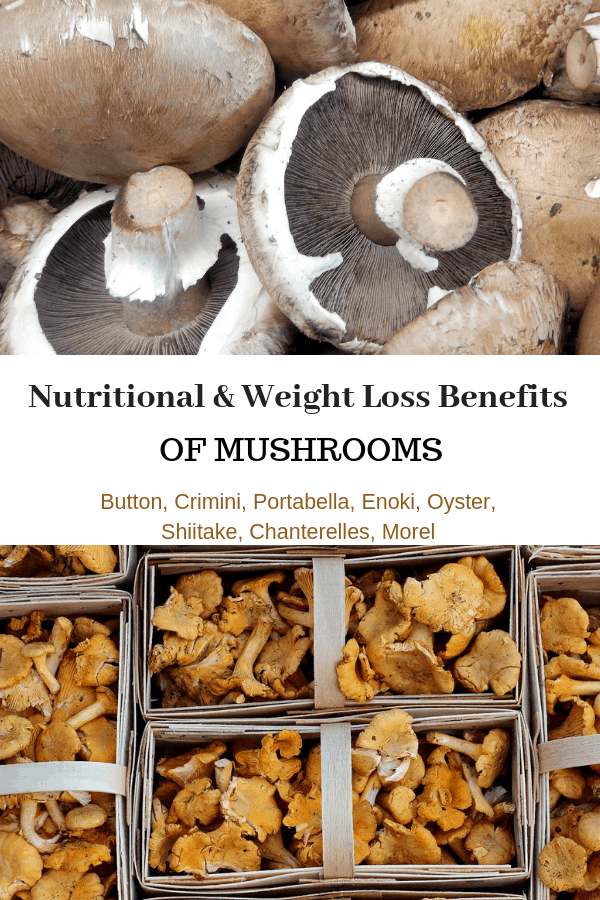 portabella and chantrelles with text overlay nutritional and weight loss benefits of mushrooms button, crimini, portabella, enoki, oyster, shiitake, chantrelles morel