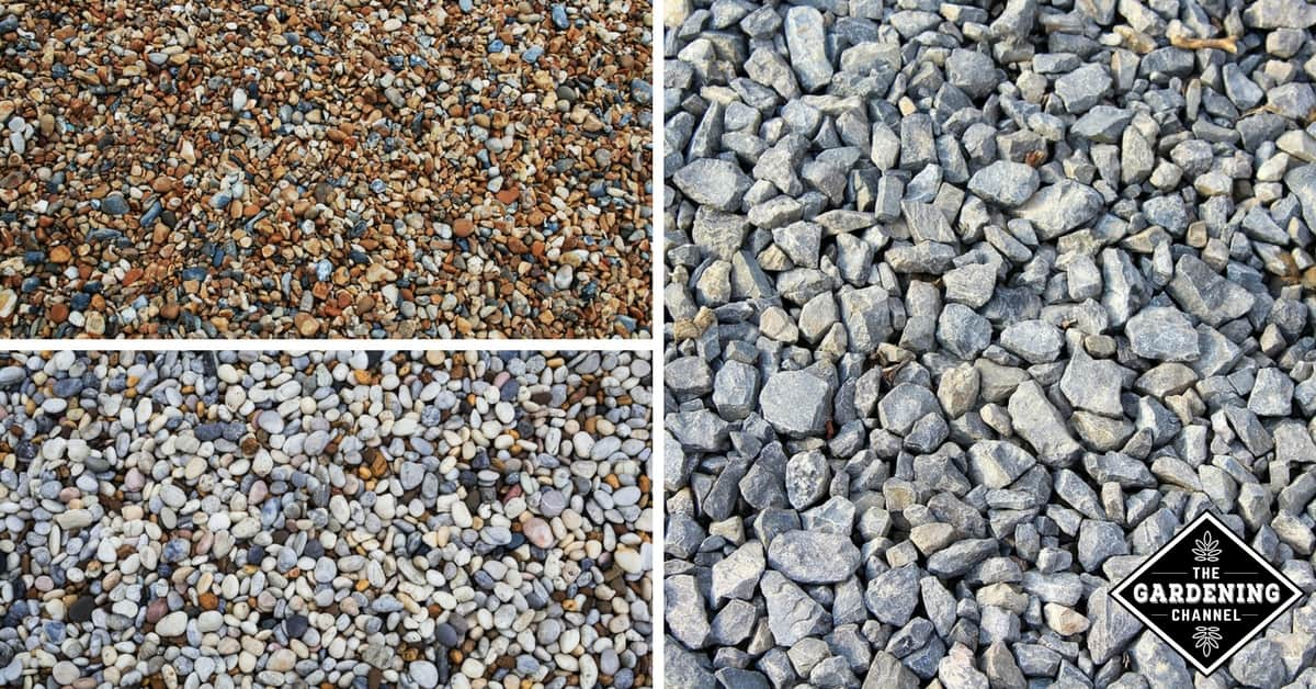 Types Of Gravel : Best types of gravel for driveways gardening channel