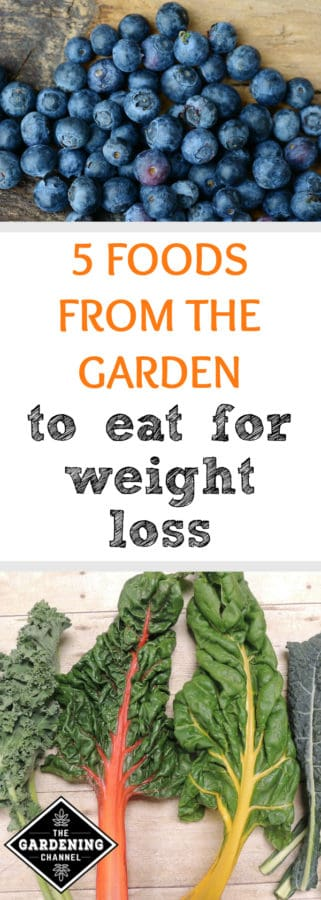 garden foods that help with weight loss