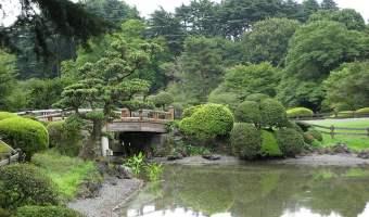tokyo japanese garden national park
