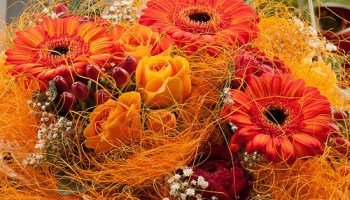 Top Flowers for Indian Weddings - Gardening Channel