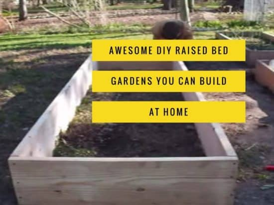 Best DIY Raised Bed Garden Plans - Gardening Channel Raised Bed Garden Design Plans on greenhouse design plans, raised vegetable garden design ideas, cedar raised garden bed plans, privacy fence design plans, best raised garden plans, diy raised garden beds plans, raised garden layout, raised bed garden box design, marshmallow catapult design plans, cheap raised garden bed plans, raised garden planting plans, corner pergola design plans, small garden design plans, vegetable garden design plans, raised bed gardening designs, exhibition booth design plans, attached pergola design plans, easy raised garden plans, luxury home design plans,