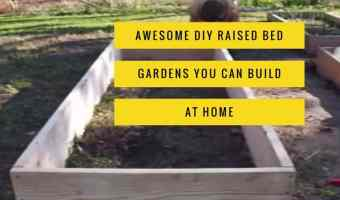 Try these awesome DIY raised bed garden ideas.