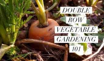 how to make double row vegetable garden