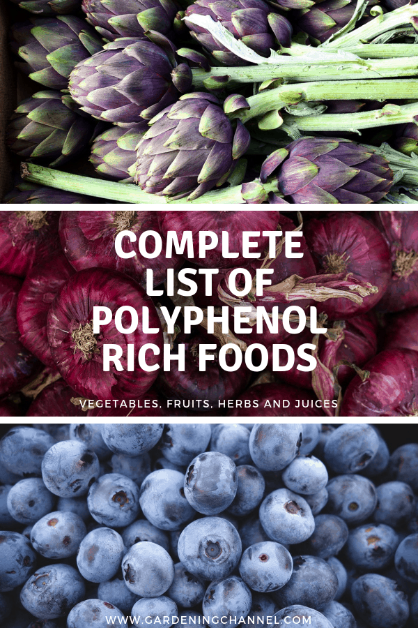 artichokes red onions blueberries with text overlay complete list of polyphenol foods vegetables fruits herbs and juices