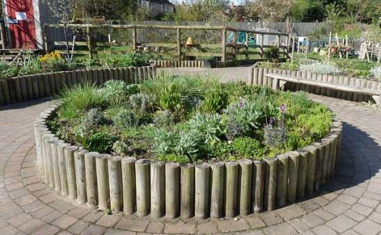 Raised beds made of wood can be stunning