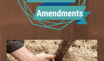 Organic Soil Amendment 101