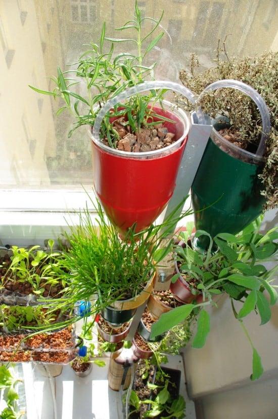 window farm garden