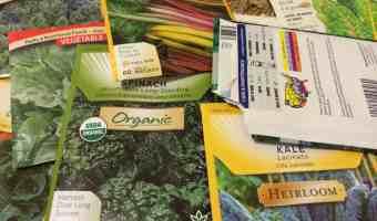 Heirloom? Organic? Hybrid? Types of Vegetable Seeds, Explained