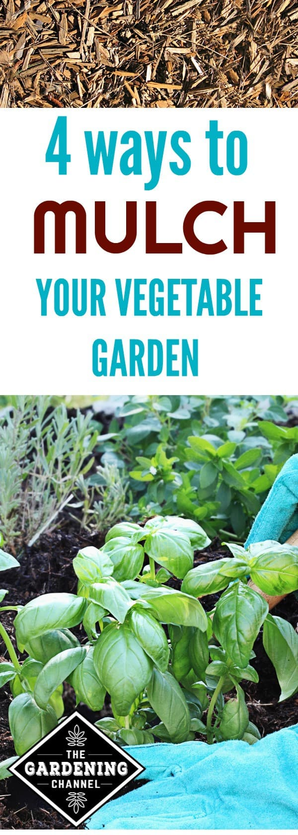 4 Ways To Mulch Your Vegetable Garden