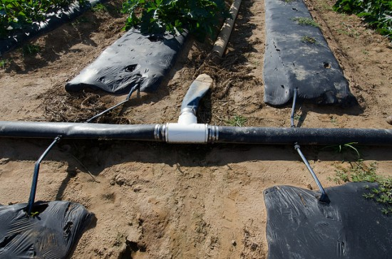 There are many ways to construct a drip irrigation system