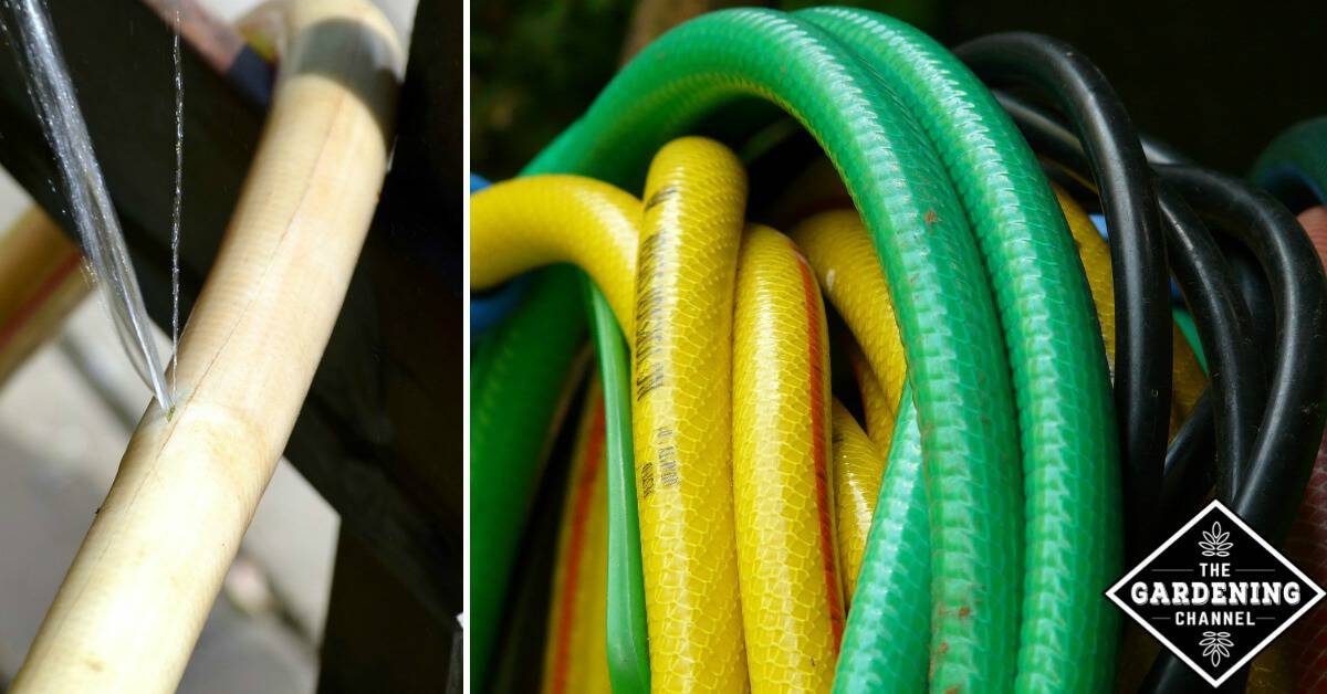 6 Creative Ways To Recycle Your Garden Hose Gardening Channel