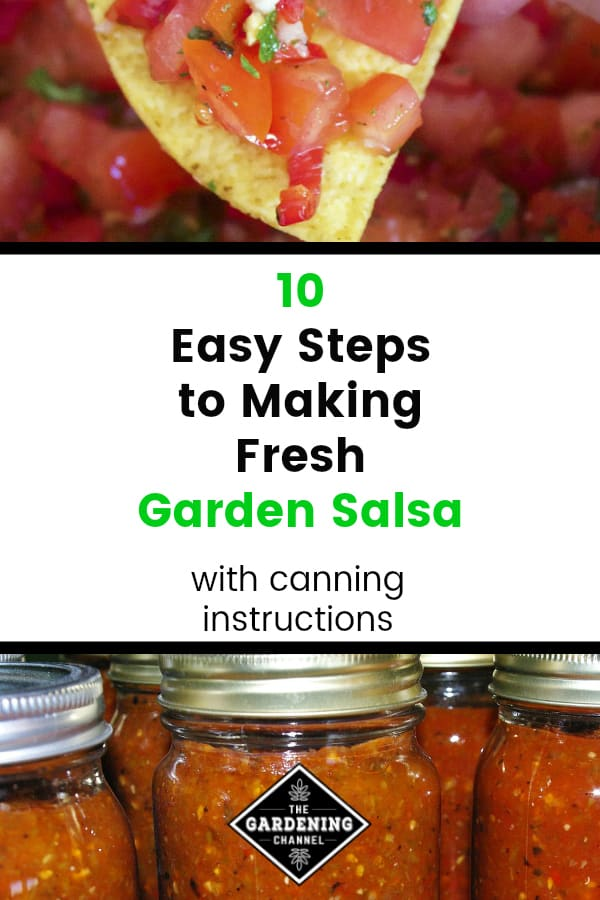 fresh salsa on tortilla chip and canned salsa with text overlay 10 easy steps to making fresh garden salsa with canning instructions