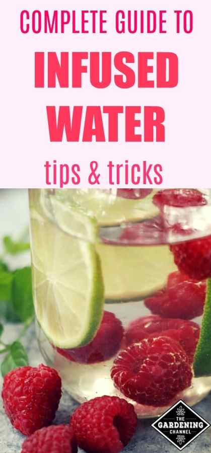 guide to infused water