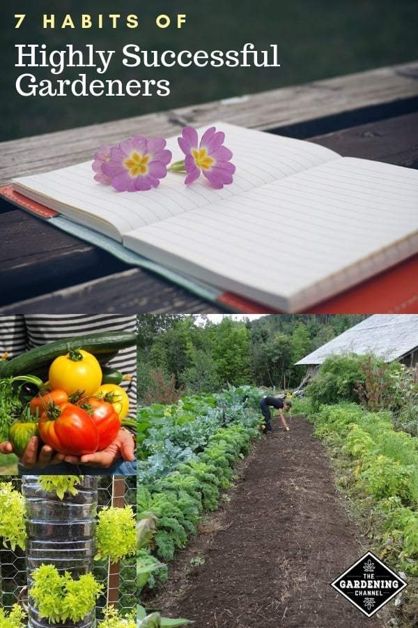 garden harvest and planning methods with text overlay seven habits of successful gardeners