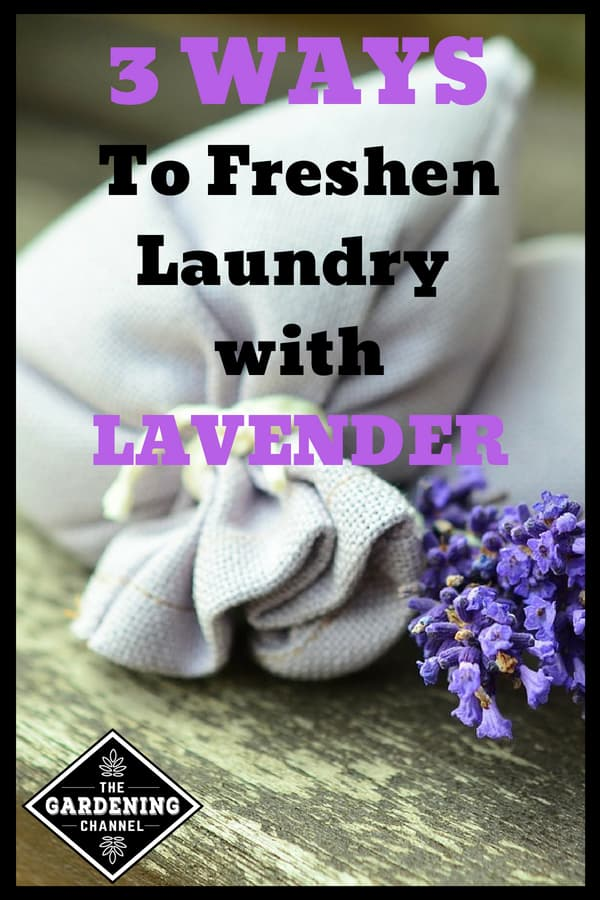 lavender sachet with text overlay 3 ways to freshen laundry with lavender