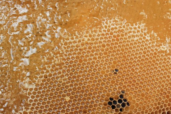 Is Your Honey Contaminated?
