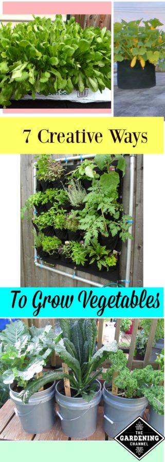 7 creative ways to grow a vegetable garden