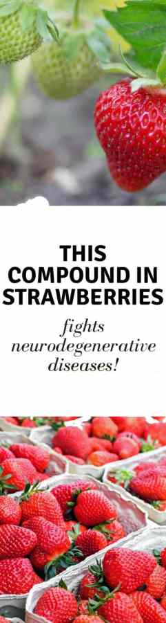 This compound found in strawberries can fight neurodegenerative diseases. Learn more about why you should add it to your diet.