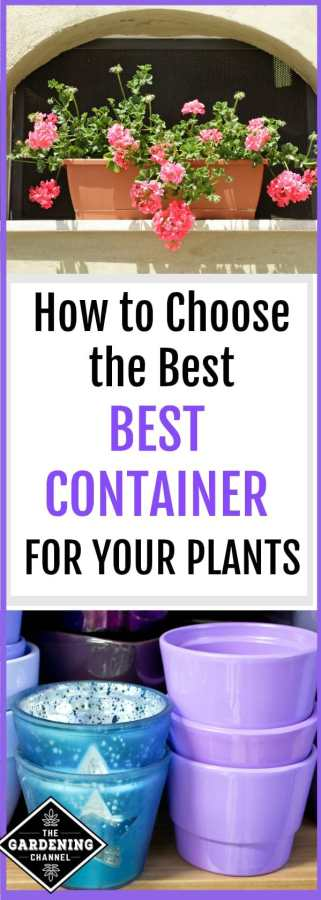 How to Choose the Best Container Type for Your Garden ...