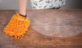 Is Contaminated Dust in Your House Making You Fat?