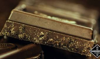 Dark chocolate enriched with extra virgin olive oil reduces cardiovascular risk