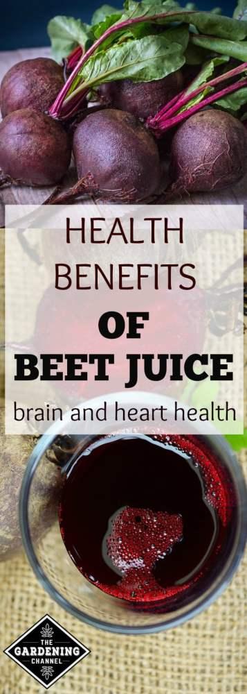 healthy benefits of drinking beet juice