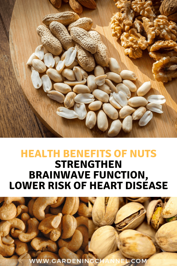 assorted nuts cashews pistachios with text overlay health benefits of nuts strengthen brainwave functions lower risk of heart disease