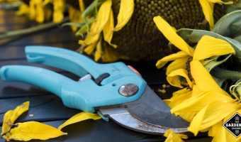 care of garden tool