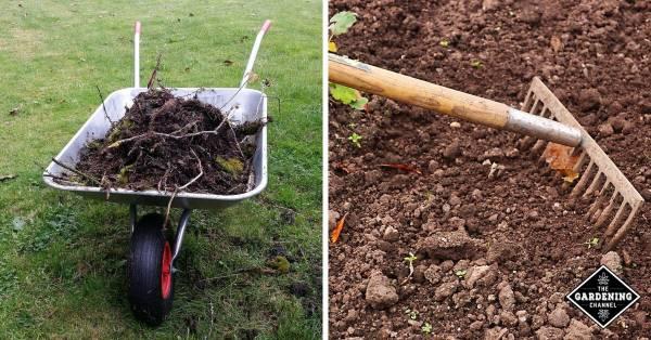 vegetable garden soil preparation tips