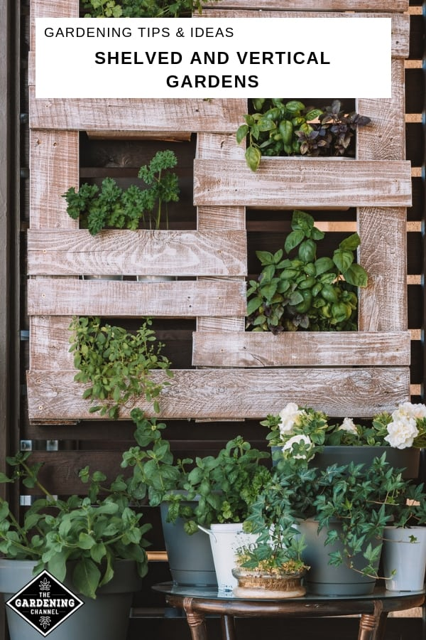 pallet vertical wall garden with text overlay gardening tips and ideas shelved and vertical gardens