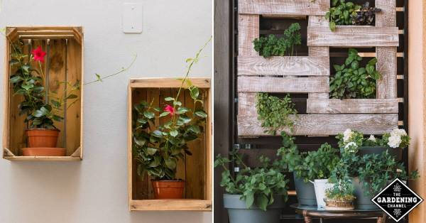 vertical gardening planters
