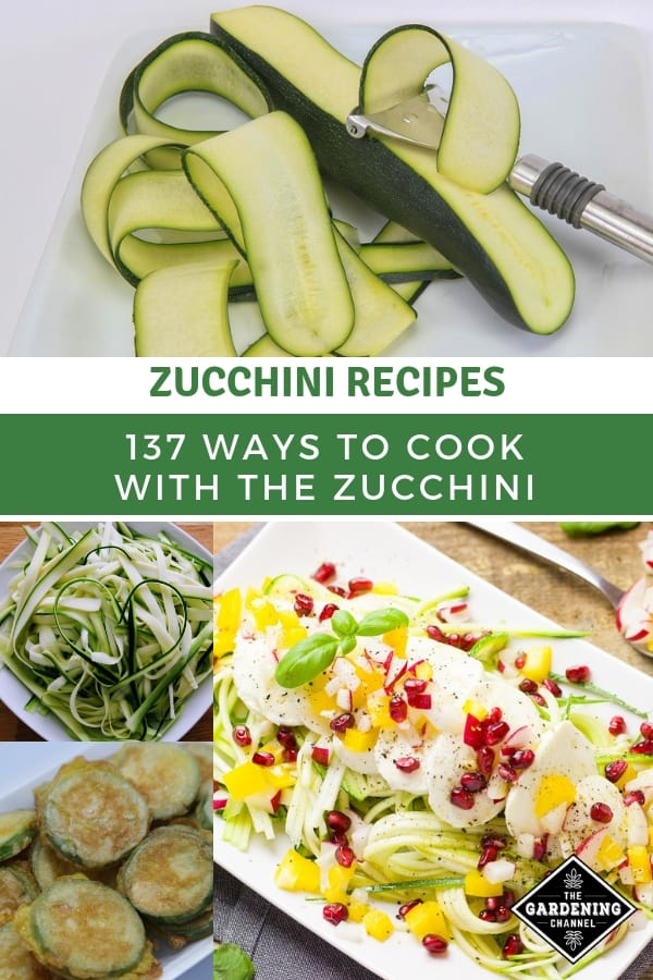 zucchini preparation noodles fried salad with text overlay zucchini recipes one hundred thirty seven ways to cook with the zucchini