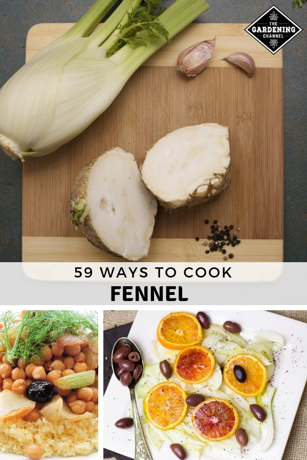 fennel on cutting board and recipes with text overlay fifty nine ways to cook fennel