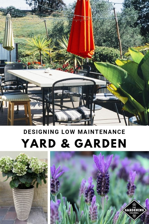outdoor living space potted plant and lavender with text overlay designing low maintenance yard and garden