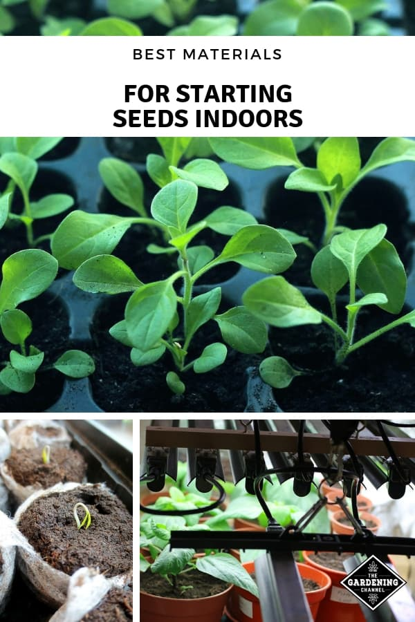 seed trays grow lights and seed soil with text overlay best materials for starting seeds indoors
